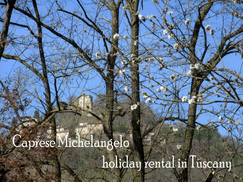 Caprese Michelangelo, holiday rental in Tuscany